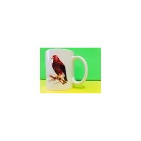 Taza Gavilán / Cup  Sparrow-hawk of