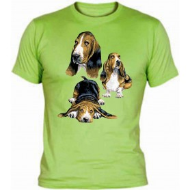 Camiseta Basset Hound Chico / Vest Basset Hound Boy